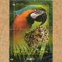 """DVD """"Вокруг Света ч.1: Крупнейшие Заповедники Бразилии"""""""