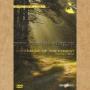 """DVD """"Вокруг Света ч.7: Магия Леса"""""""